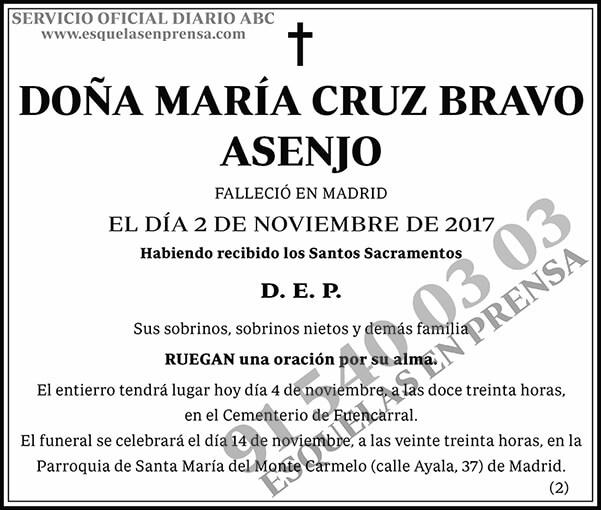 María Cruz Bravo Asenjo